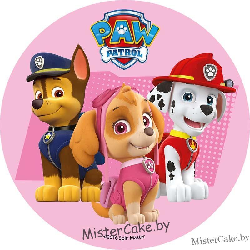 знаем, щенячий патруль картинка круглая состоит двух корпусов